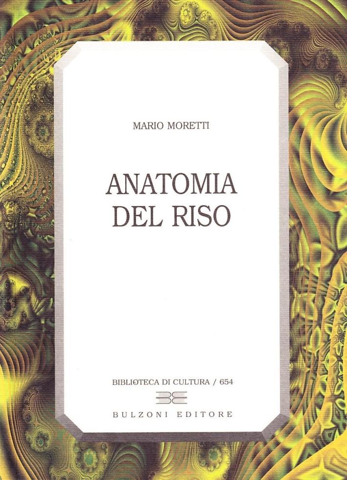 Anatomia del riso. La meccanica della comicità nello spettacolo dal vivo, nel cinema, nella letteratura, nelle arti plastiche e grafiche.