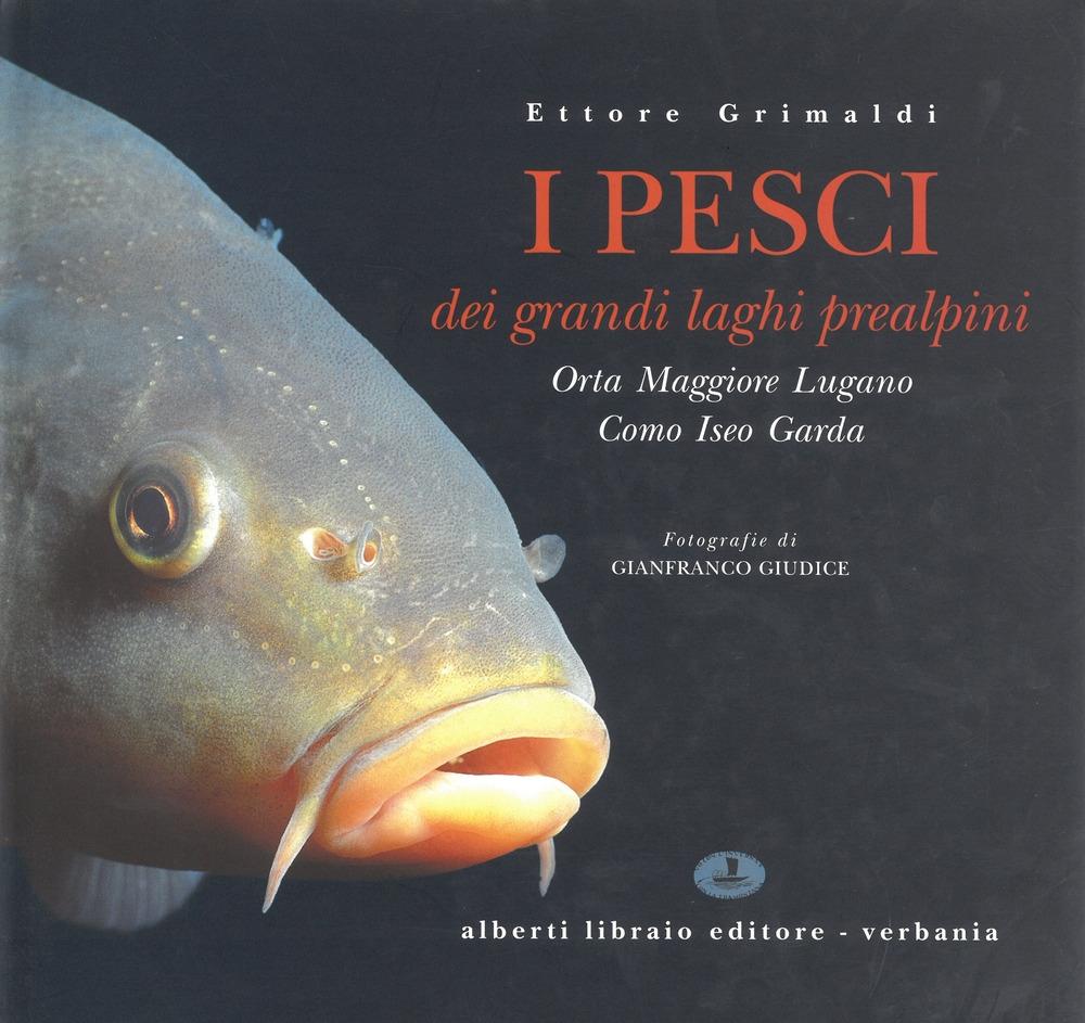 I pesci dei laghi prealpini: Lago Maggiore, Orta, Lugano, Como, Iseo, Garda.