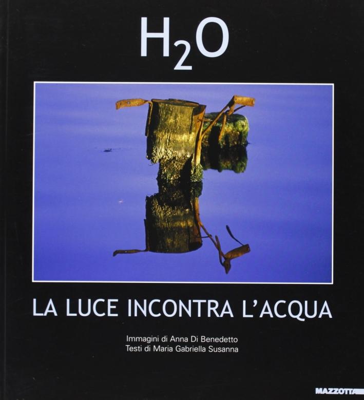 H2O. La luce incontra l'acqua. Catalogo della mostra (Roma, 10 novembre 2004-10 gennaio 2005). Ediz. illustrata