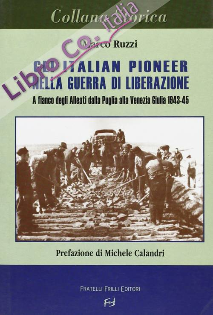 Gli italian pioner nella guerra di liberazione. A fianco degli alleati dalla Puglia alla Venezia Giulia 1943-1945.