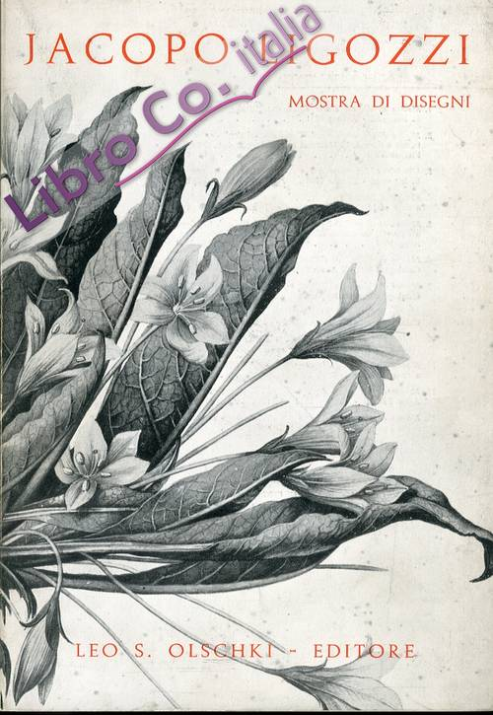 Mostra di disegni di Jacopo Ligozzi