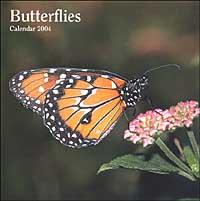 Butterflies. Calendario 2004