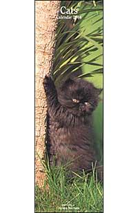 Cats. Calendario 2004 lungo.