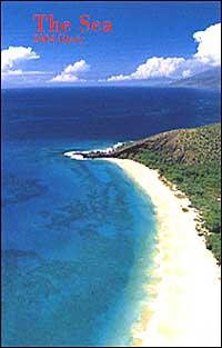 The sea. Agenda settimanale 2004 piccola.