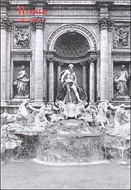 Roma. Agenda 2004