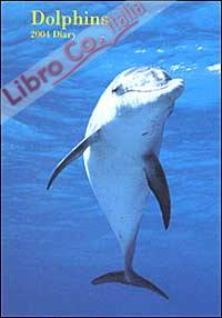 Dolphins. Agenda 2004