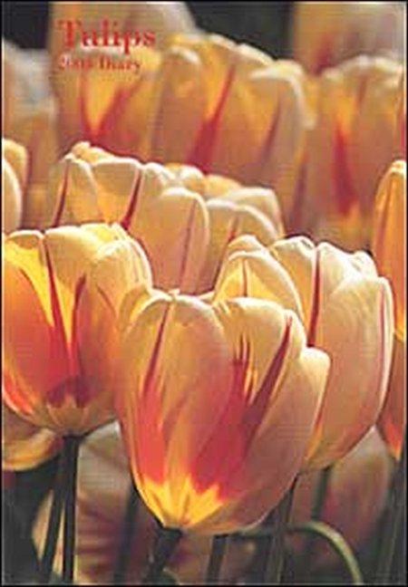 Tulips. Agenda 2004