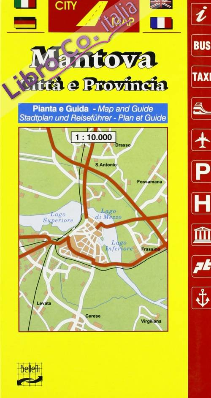 Mantova e provincia 1:10.000
