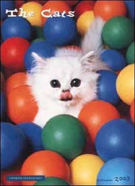 Cats. Calendario 2003.