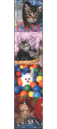 Cats. Calendario 2003 lungo