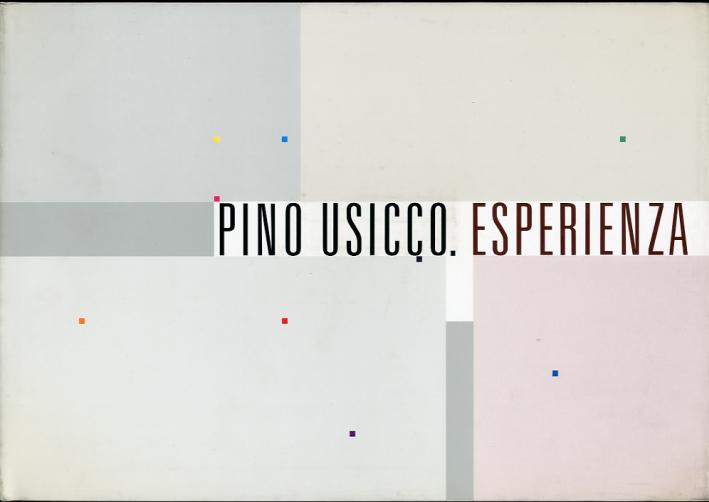 Pino Usicco. Esperienza. [Ed. Italiana e Inglese]