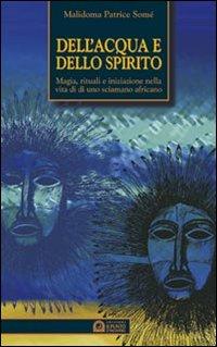 Dell'acqua e dello spirito. Magia, rituali e iniziazione nella vita di uno sciamano africano
