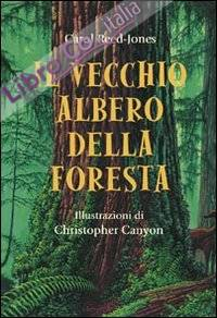 Il vecchio albero della foresta