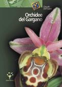 Orchidee del Gargano.