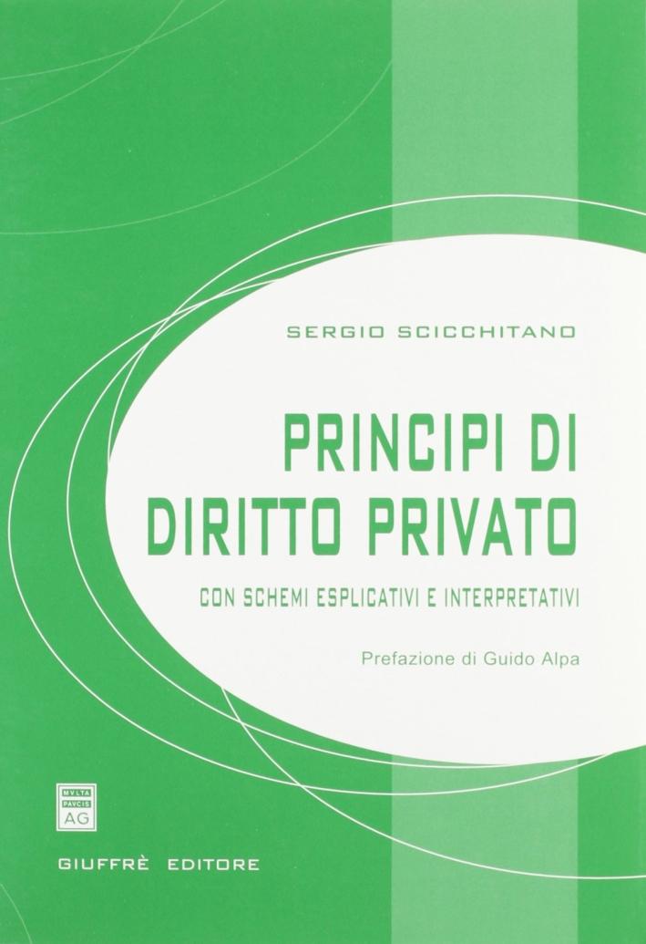 Principi di diritto privato. Con schemi esplicativi e interpretativi.