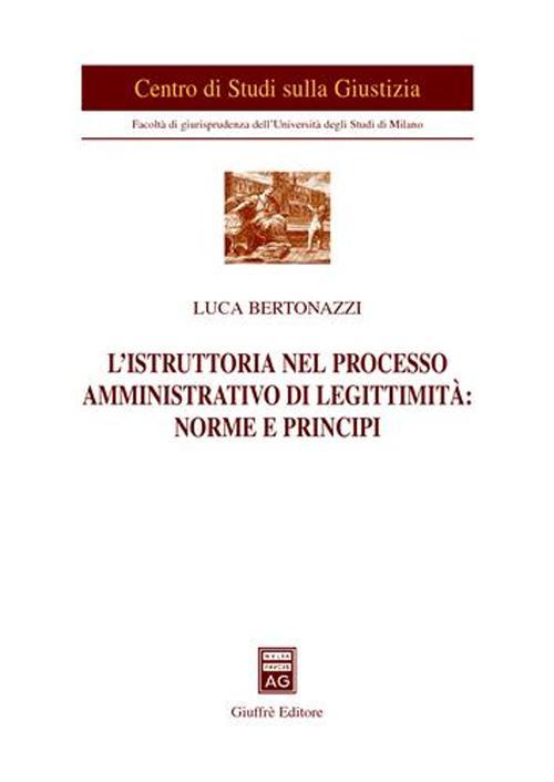 L'istruttoria nel processo amministrativo di legittimità: norme e principi