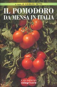 Il pomodoro da mensa in Italia