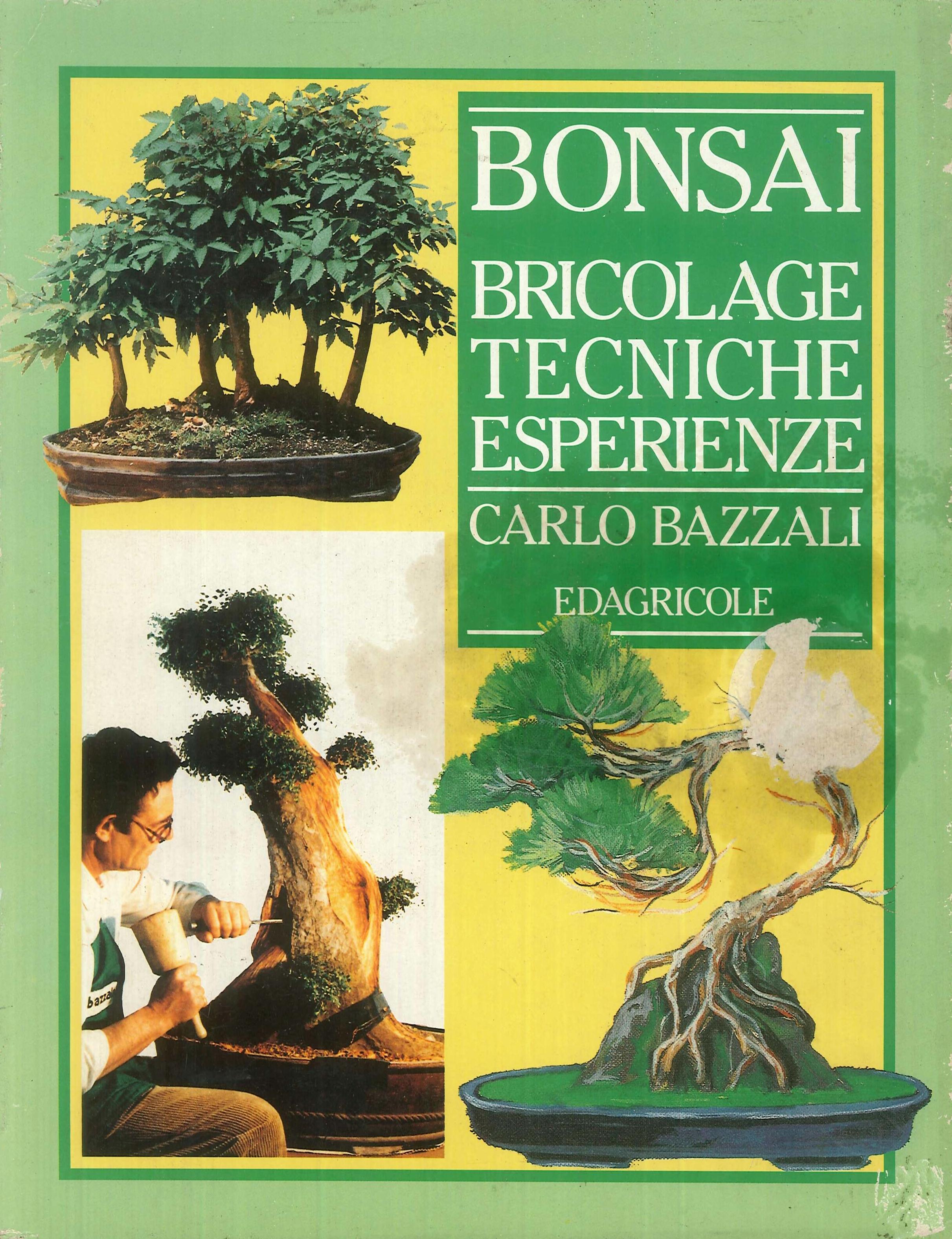 Bonsai. Bricolage, tecniche, esperienze