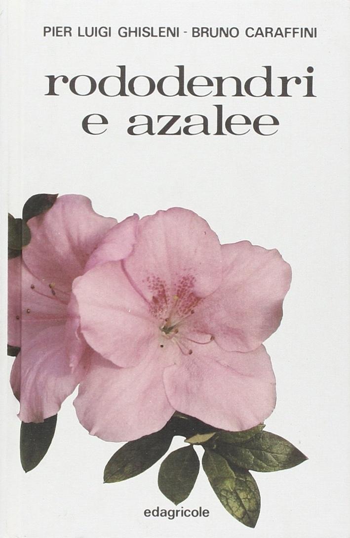 Rododendri e azalee