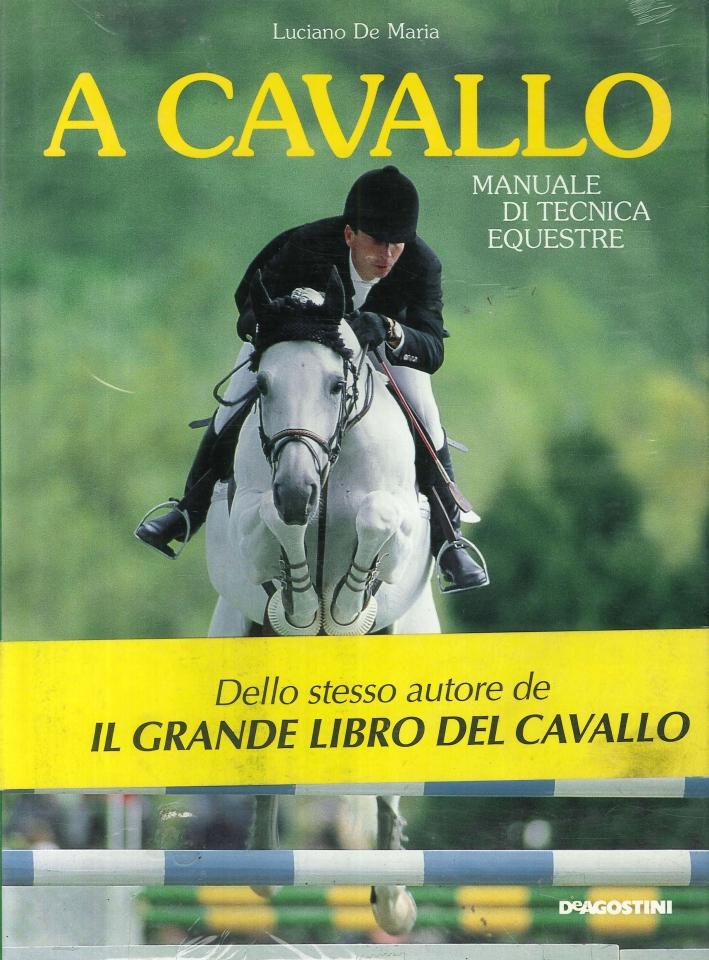 A cavallo. Manuale di tecnica equestre