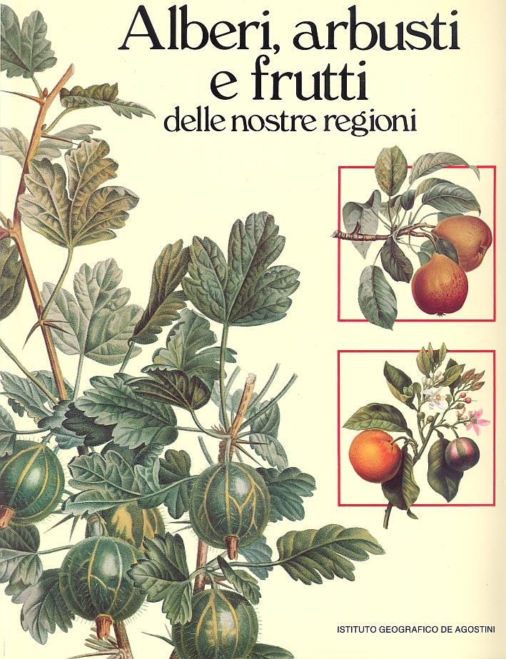 Alberi, Arbusti e Frutti delle Nostre Regioni