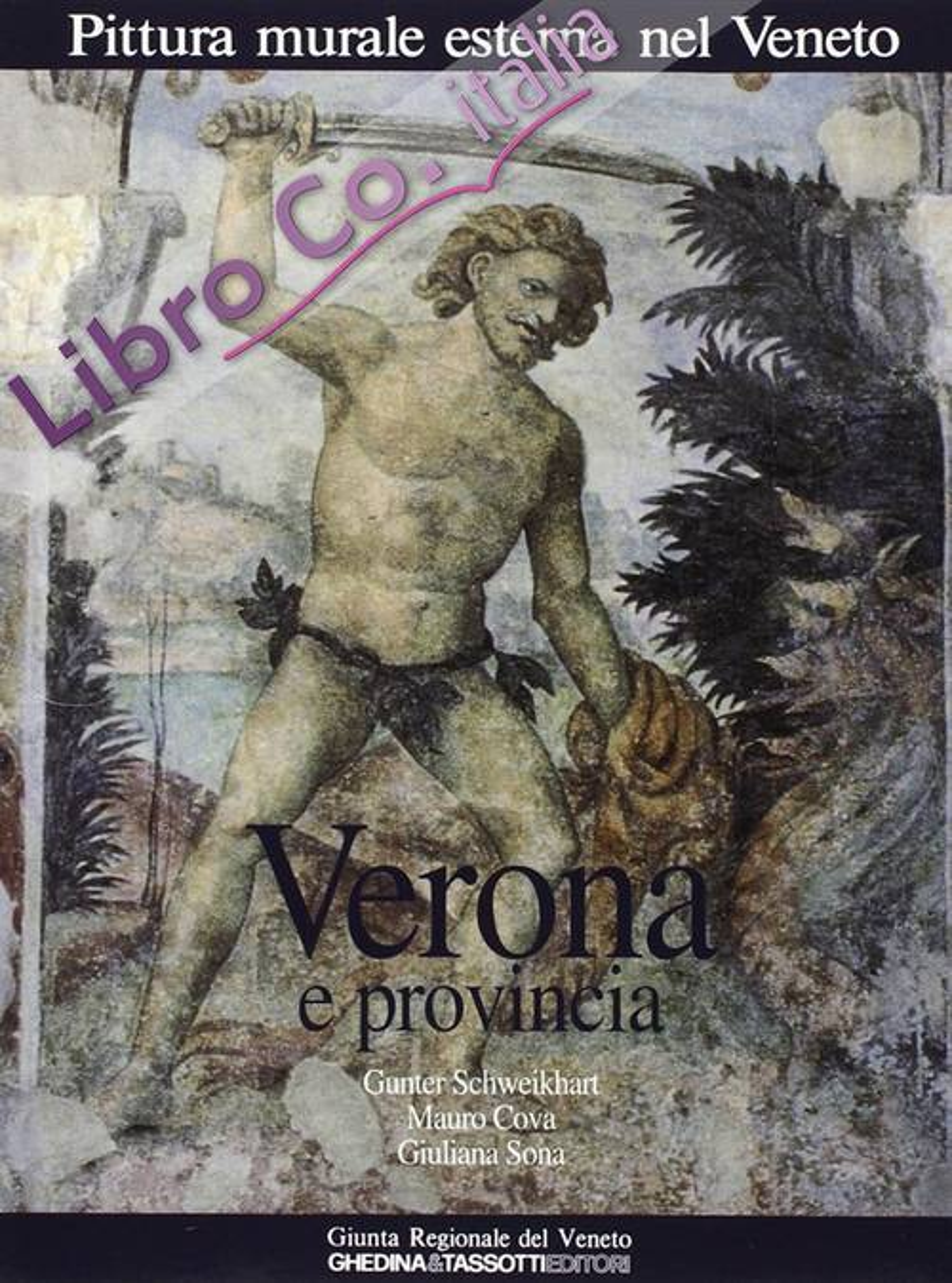 Pittura Murale Esterna nel Veneto. Vol. 3: Verona e Provincia.
