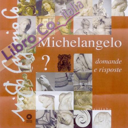 Michelangelo. Domande e risposte. [English Ed.]