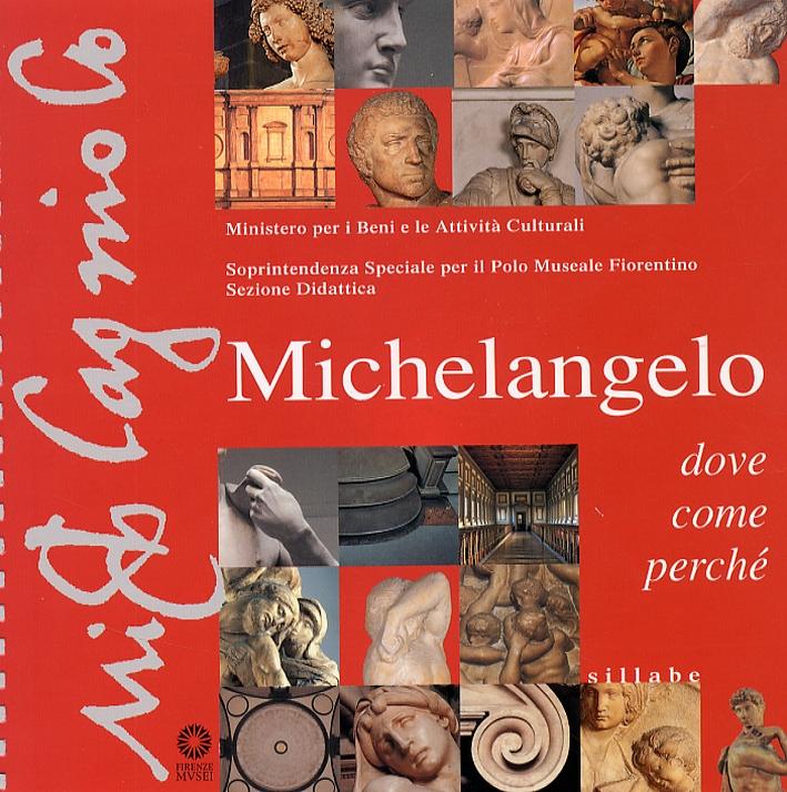 Michelangelo. Dove come perché?