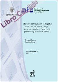 Iterative computation of negative curvative directions in large scale optimization: theory and preliminary numerical results