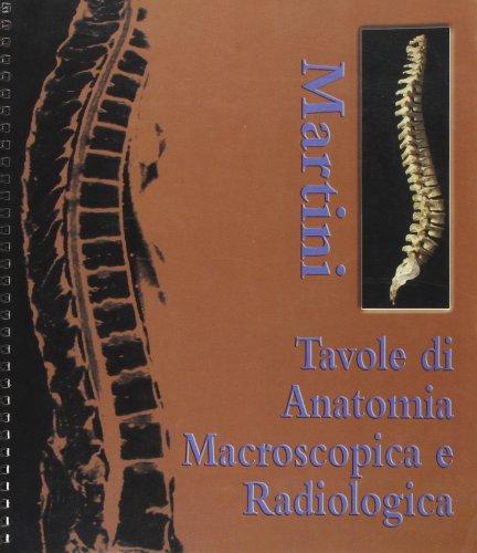 Tavole di anatomia macroscopica e radiologica.