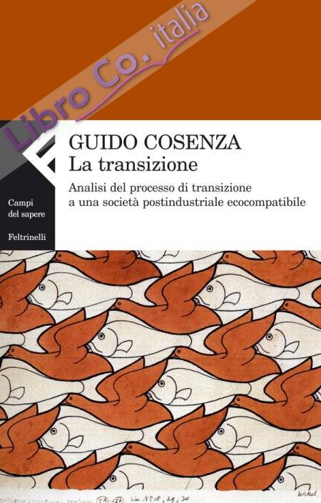 La transizione. Analisi del processo di transizione a una società postindustriale ecocompatibile.