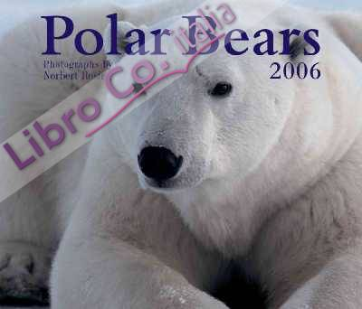 Polar Bears 2006 Calendar