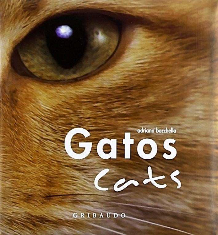 Gatos-Cats. Ediz. illustrata