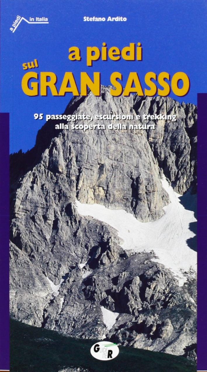 A Piedi sul Gran Sasso. 95 Passeggiate, Escursioni e Trekking alla Scoperta della Natura con Cartina Allegata 1:250.000
