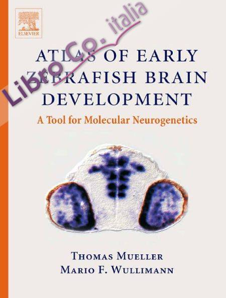 Atlas of Early Zebrafish Brain Development
