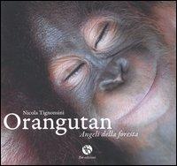 Orangutan, Angeli delle Foresta.