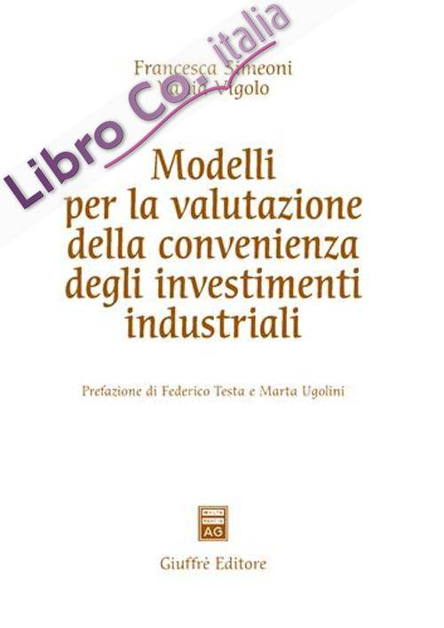 Modelli per la valutazione della convenienza degli investimenti industriali.