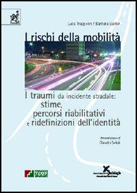 I rischi della mobilità. I traumi da incidente stradale: stime, percorsi riabilitativi e ridefinizioni dell'identità
