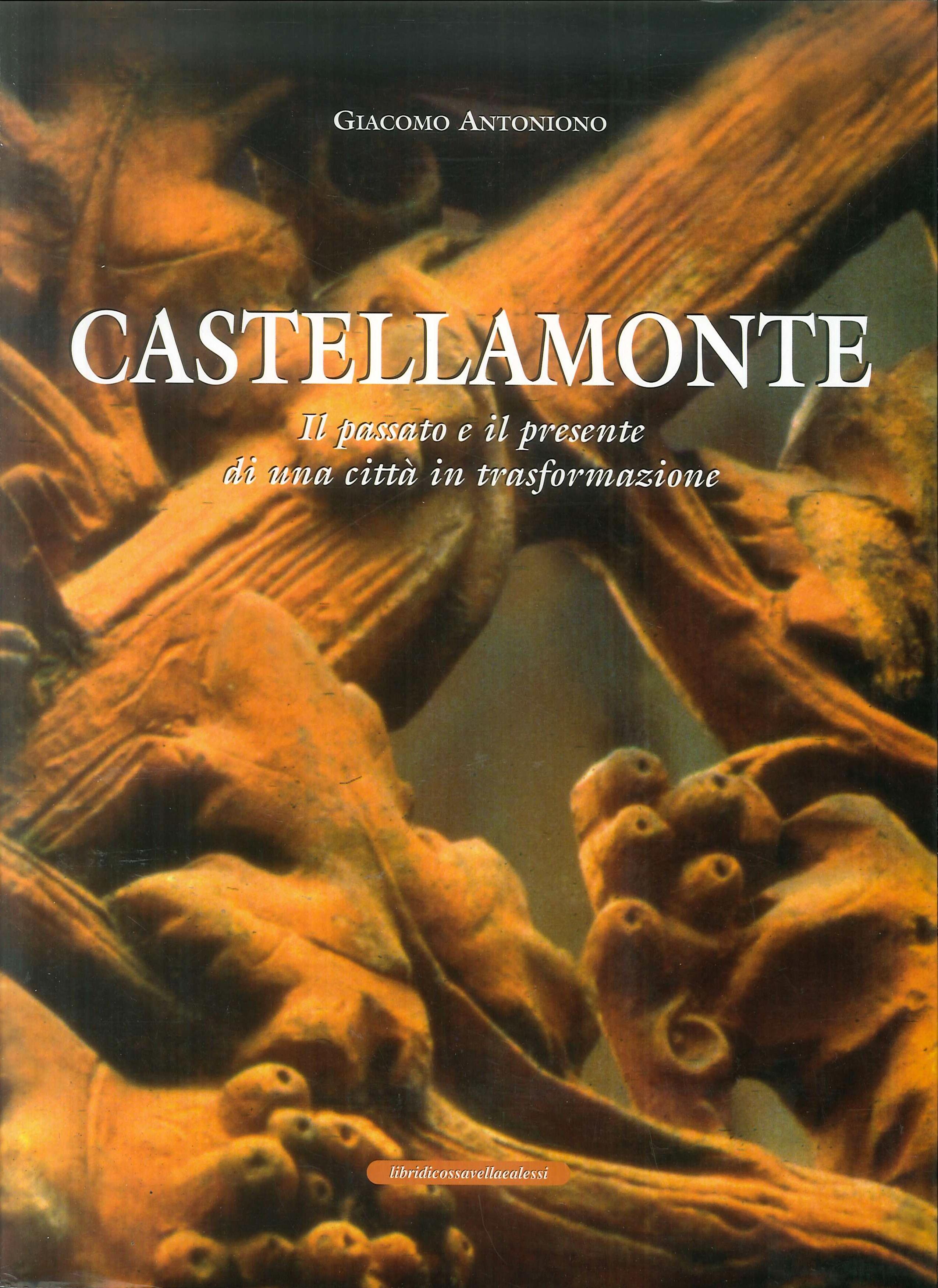 Castellamonte. Il passato e il presente di una città in trasformazione