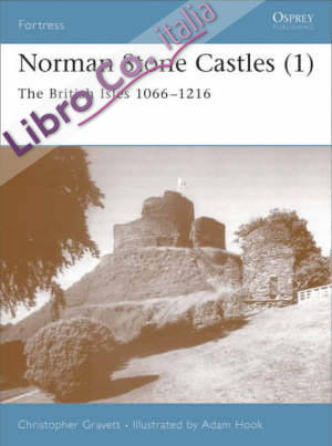 Fortress 13 - norman stone castles (1)