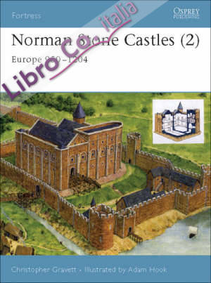 Fortress 18 - norman stone castles (2)