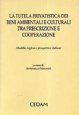 La tutela privatistica dei beni ambientali e culturali tra prescrizione e cooperazione. Modello inglese e prospettive italiane