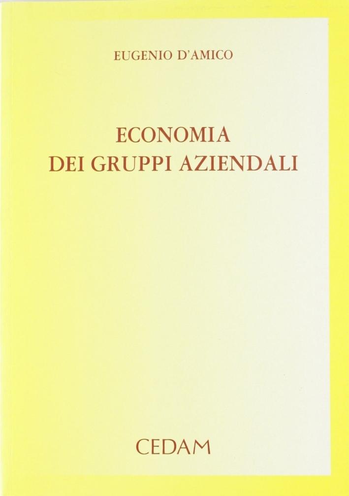 Economia Dei Gruppi Aziendali