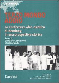 Terzo mondo addio. La conferenza afro-asiatica di Bandung in una prospettiva storica.