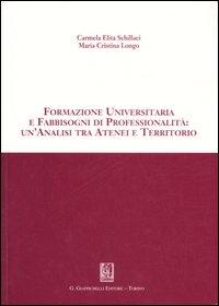 Formazione universitaria e fabbisogni di professionalità: un'analisi tra atenei e territorio
