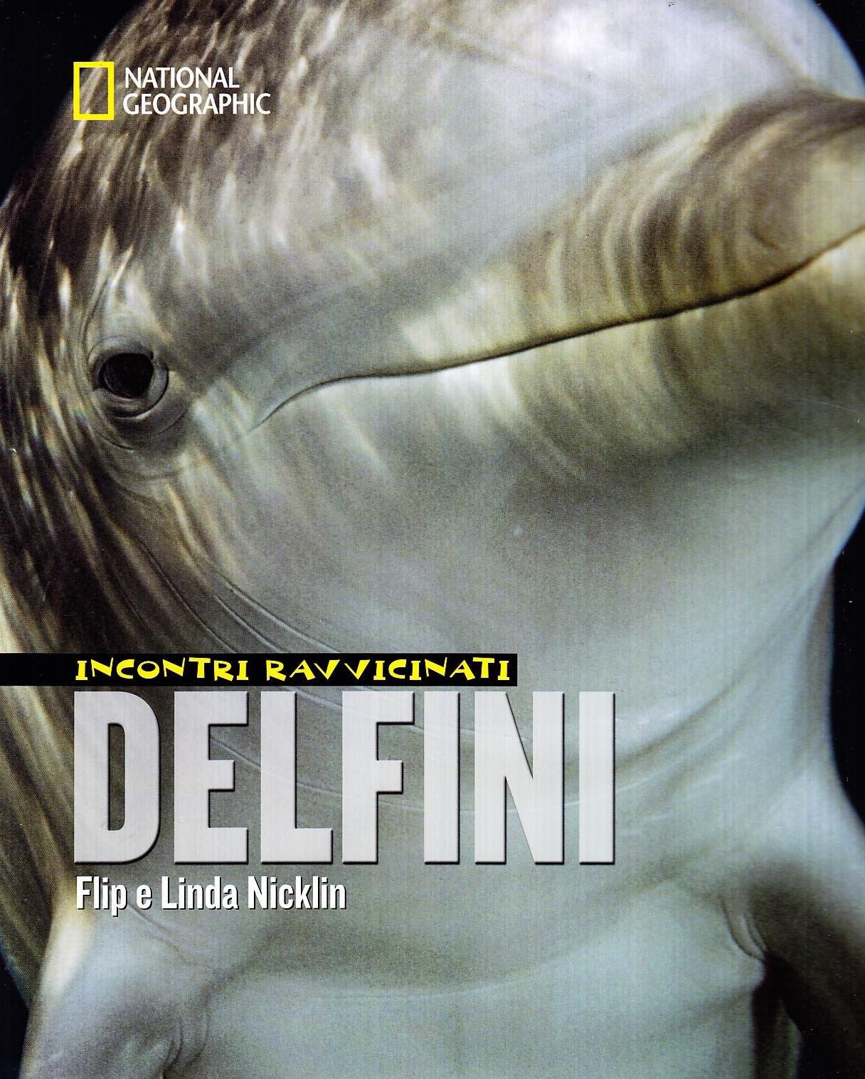 Delfini. Incontri Ravvicinati