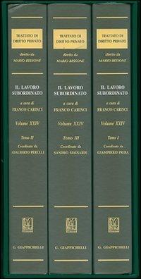 Trattato di diritto privato. Vol. 24: Il lavoro subordinato
