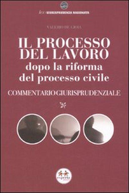 Il processo del lavoro dopo la riforma del processo civile. Commentario giurisprudenziale