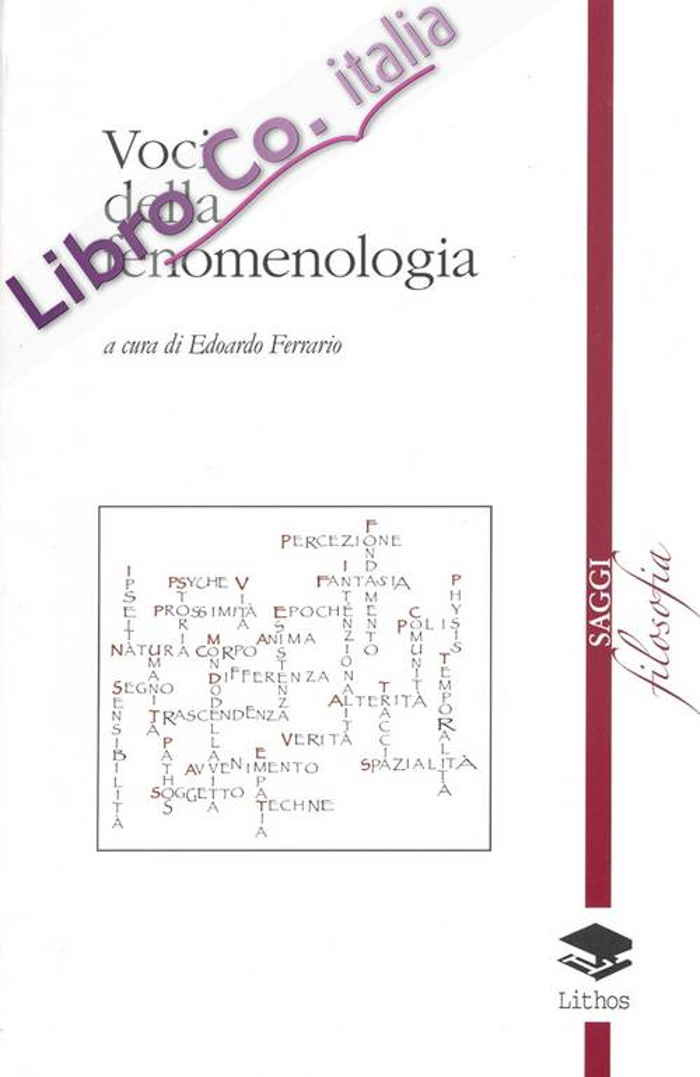 Voci della fenomenologia