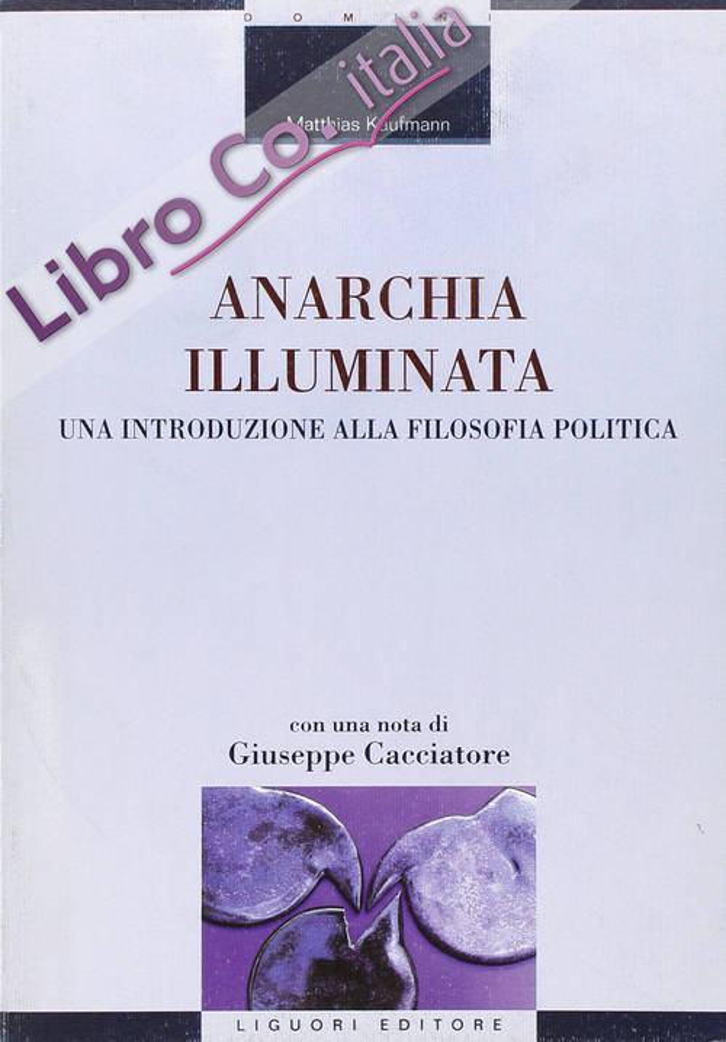Anarchia illuminata. Una introduzione alla filosofia politica